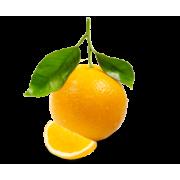 Apelsini eeterlik õli